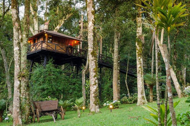 Divulgação/Casa Monte Verde