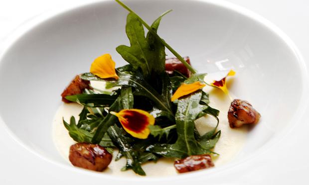 Salada de queijo meia cura e ruqueta