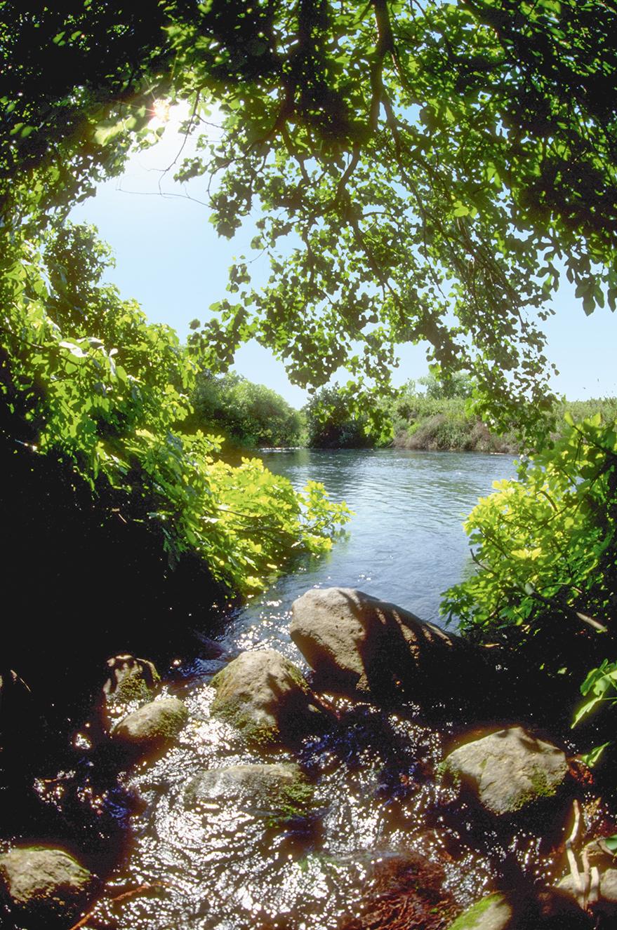 The source of the Jordan River in Israel.
