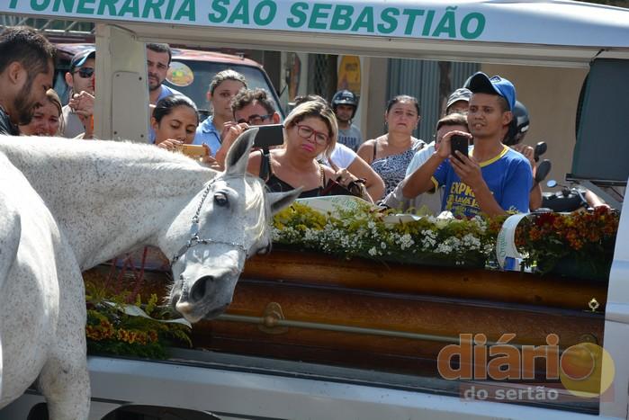cavalo-sereno-wagner