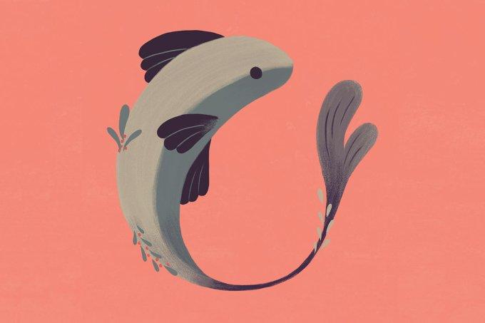 peixes-signo