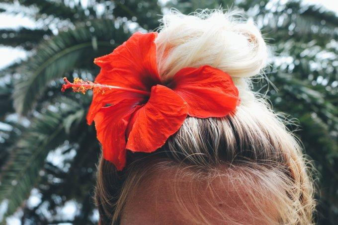 coque cabelo verão hibisco flor