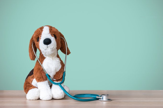 Pediatric doctor for children medical healthcare and child nursing care with dog toy, stethoscope and blank blackboard copy space on clinical  pediatrician's work table in hospital