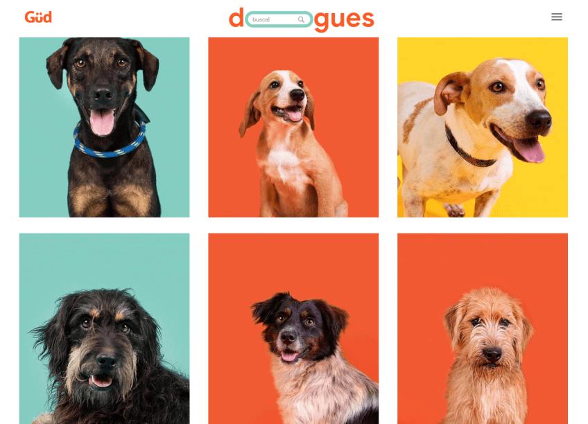 Página que contém os outros cãezinhos que podem ser adotados