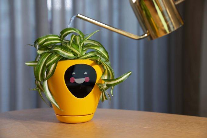 """Lua, o vaso que """"transforma"""" planta em bichinho virtual"""