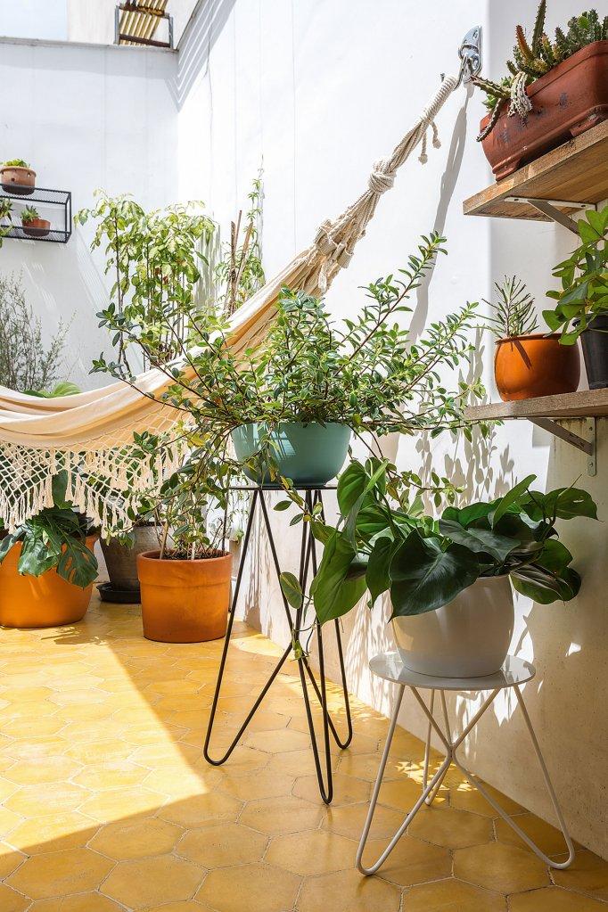 Plantas e vasos na decoração