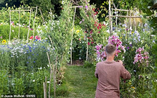 Tyler e Aimee Morrison dedicaram horas por dia ao cultivo das flores