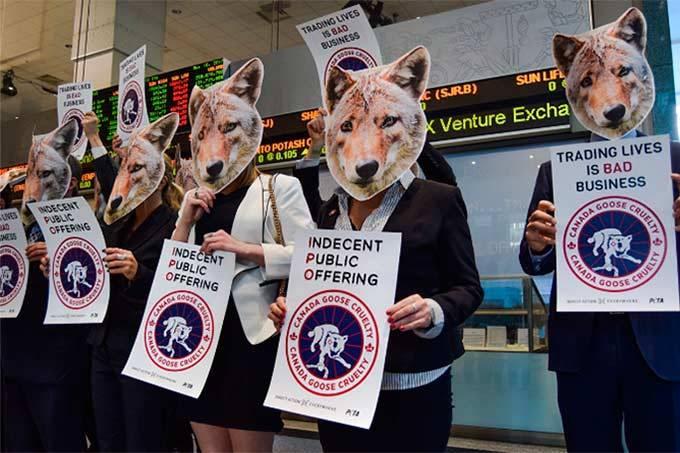 manifestantes pelos animais