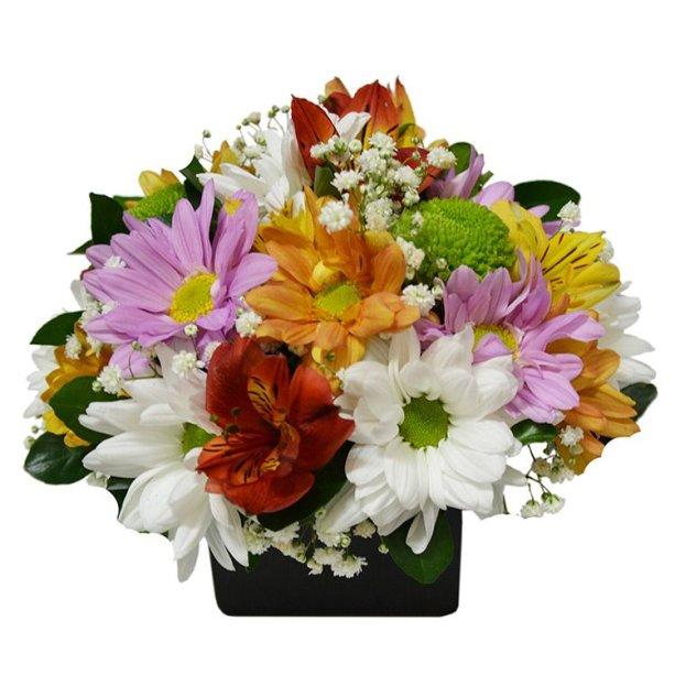 "Arranjo de flores do campo, nas medidas 18 x 20 cm. <a href=""https://www.giulianaflores.com.br/arranjo-de-flores-do-campo-misto/p28188/?partner=google_shopping&gclid=EAIaIQobChMIqrfKv5H44QIVDwaRCh0XnQQ9EAkYDCABEgLtJfD_BwE"" target=""_blank"" rel=""noopener"">Giuliana Flores</a>, R$ 99,80"
