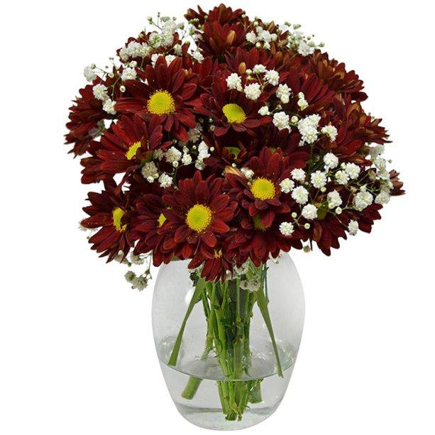 "Arranjo de flores silvestres em vaso de vidro, nas medidas 10 x 20 cm. <a href=""https://www.giulianaflores.com.br/delicado-mix-de-flores-silvestres-vermelho/p28454/?partner=google_shopping&gclid=EAIaIQobChMIrKDkmJL44QIVyAiRCh1uXwwREAkYAiABEgLGB_D_BwE"" target=""_blank"" rel=""noopener"">Giuliana Flores</a>, R$ 87,80"