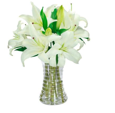 """Arranjo de lírios brancos, nas medidas 25 x 37 cm. <a href=""""https://www.novaflor.com.br/luxuosos-lirios-brancos/p22028/?src=DEPT"""" target=""""_blank"""" rel=""""noopener"""">Nova Flor</a>, R$ 158,90"""