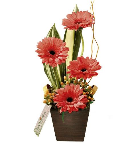 """Arranjo de quatro gérberas em tons rosados em um vaso de madeira com 40 cm de altura. <a href=""""https://www.uniflores.com.br/arranjo-poesia-com-gerberas"""" target=""""_blank"""" rel=""""noopener"""">UniFlores</a>, R$ 113,80"""