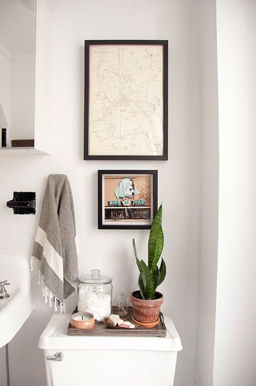 Plantas para ter no banheiro - espada de são jorge