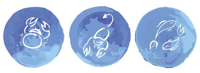 Astrologia - Signos de água - Câncer Escorpião Peixes