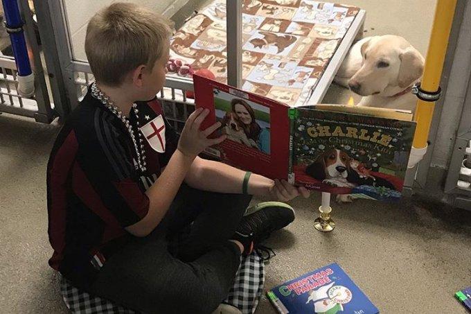 Criança lê para cão em abrigo