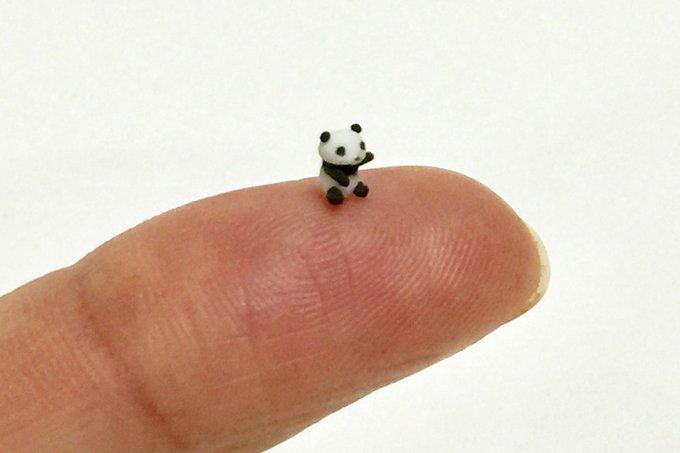 Bicho em miniatura feito de argila