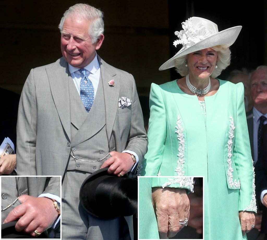 Principe Charles sem Aliança