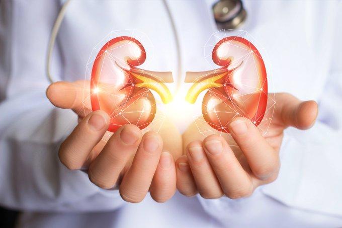rins exames anuais doença renal crônica em mulheres fertilidade
