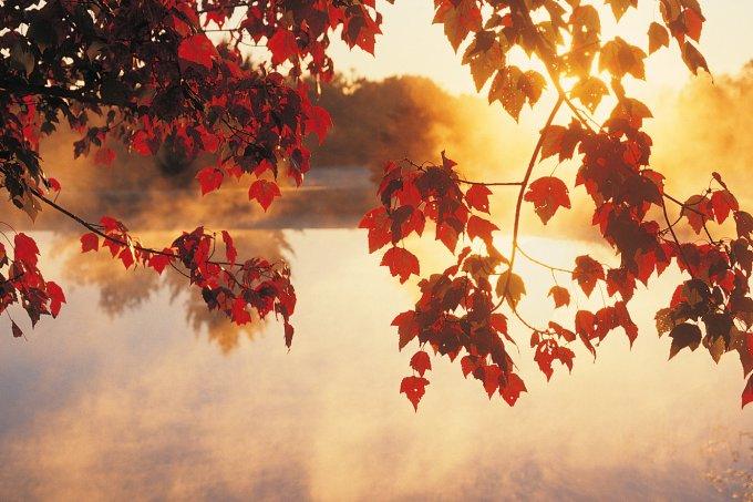 Equinócio de Outono: o fenômeno que marca o início da estação