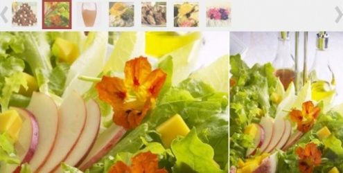 Flores comestíveis: conheça as diferentes espécies e receitas