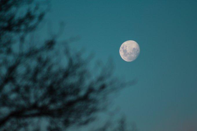 Lua Nova em Sagitário