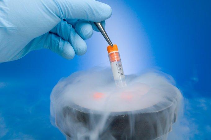 criopreservação congelamento