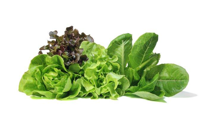 alface salada folhas