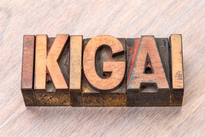 Ikigai: conheça o segredo japonês para uma vida longa e feliz
