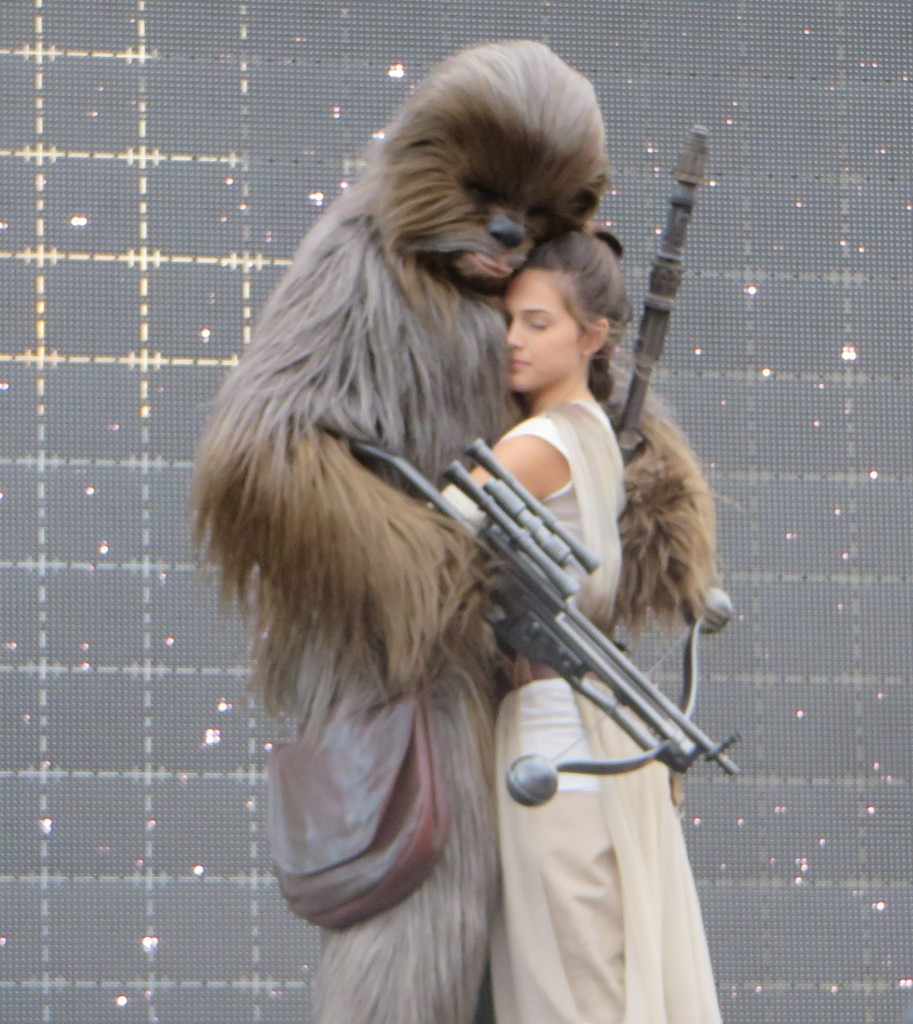Chewbacca Rey Star Wars Dinsey