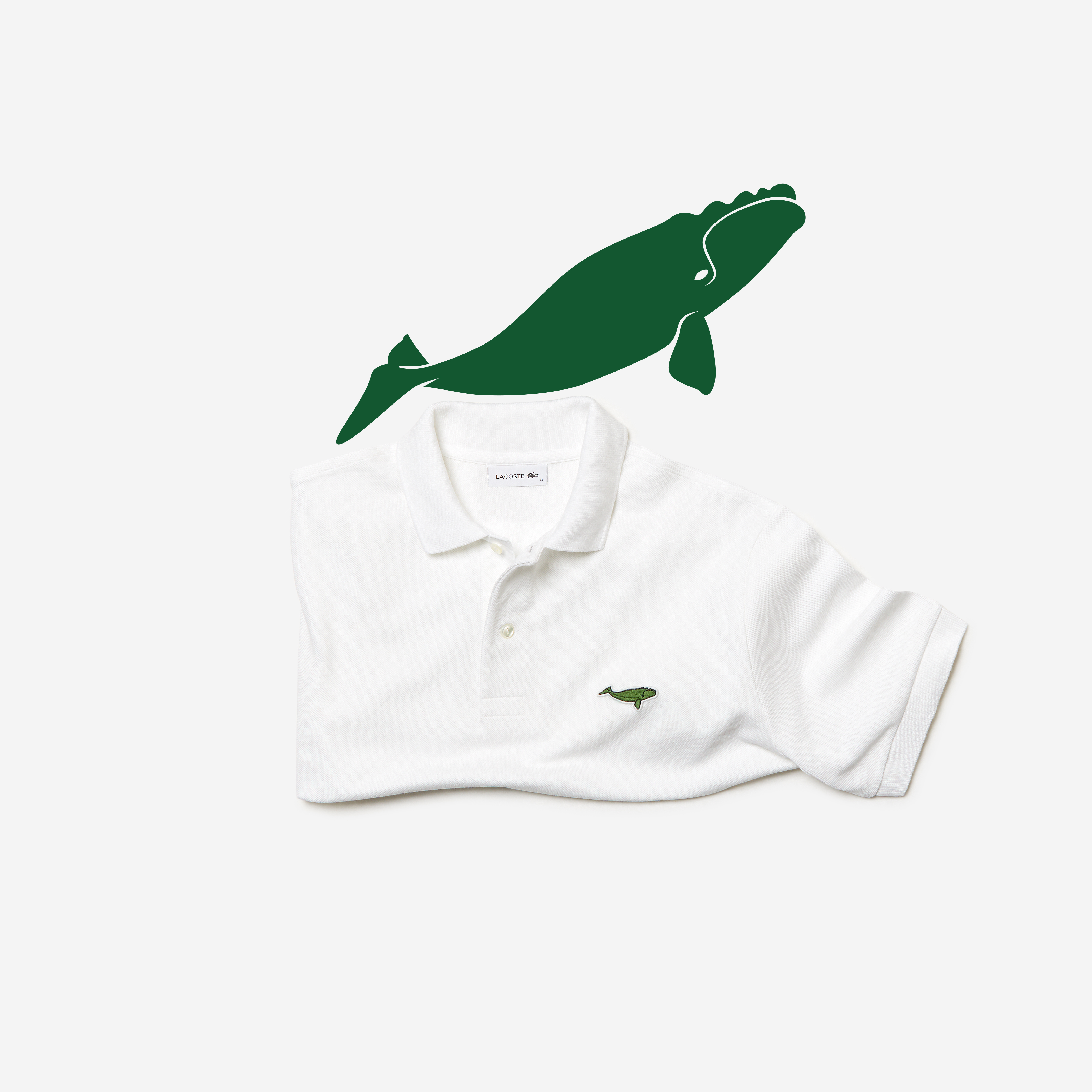 lacoste-x-save-our-pieces-north-atlantic-right-whale-packshot-polo_0116-1
