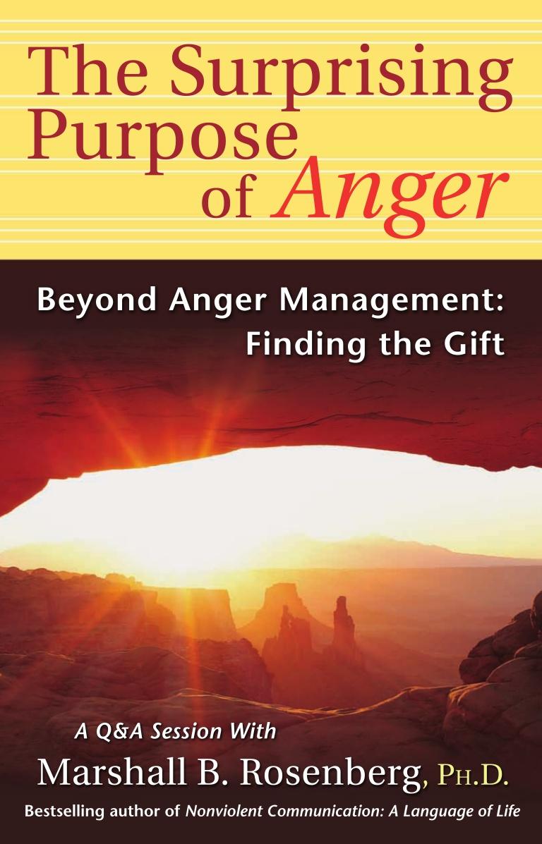 Livro sobre comunicação não-violenta -- The Surprising Purpose of Anger