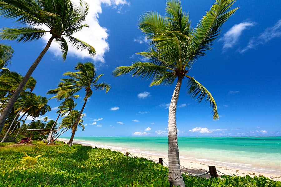 10 praias do Nordeste brasileiro que deixam o Caribe no chinelo