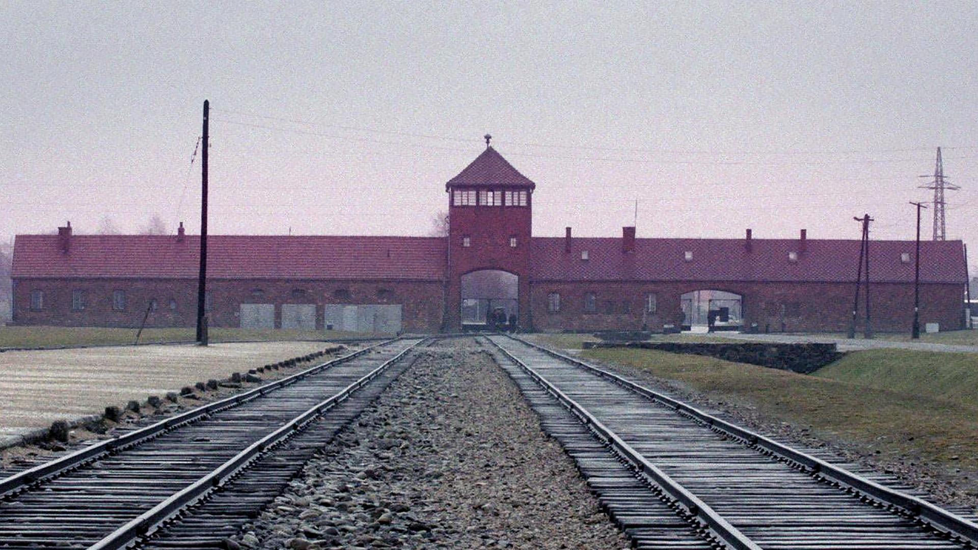 O Contador de Auschwitz