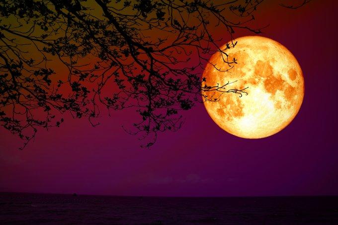 Eclipse Lunar Lua de Sangue