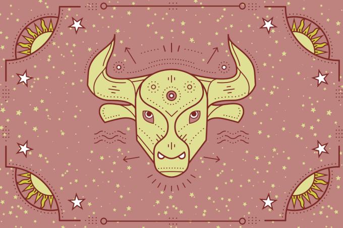 touro-1