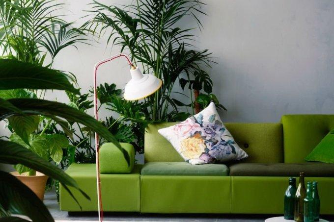 Urban jungle dicas para colocar verde em casa