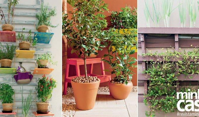 10 provas de que você pode ter uma hortinha