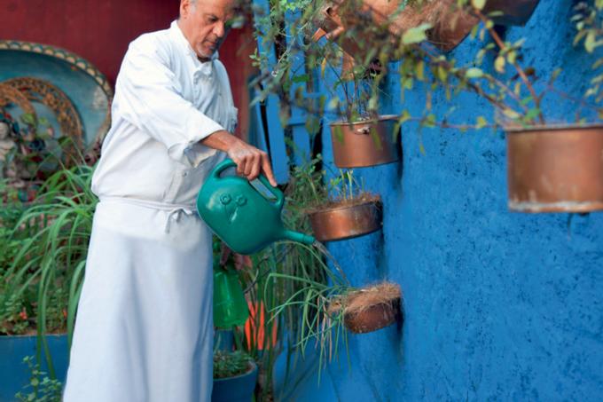 Sustentabilidade horta orgânica cultivada em caixotes e panelas Chef Augusto Pinto1