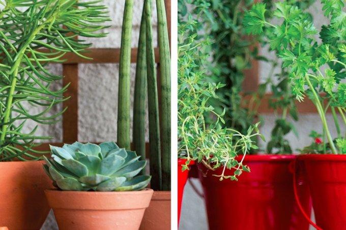 varanda-4-estilos-para-seu-cantinho-verde-capa