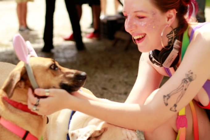 Carnaval para pets