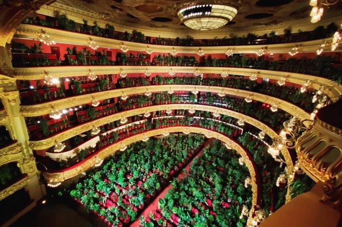 Grande Teatro do Liceu, em Barcelona, reabre com espetáculo para mais de 2 mil plantas