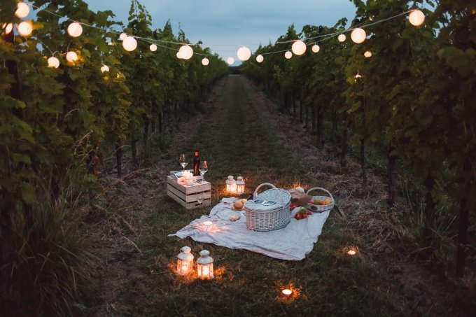 Food and light arranged in vineyard for a picnic at night