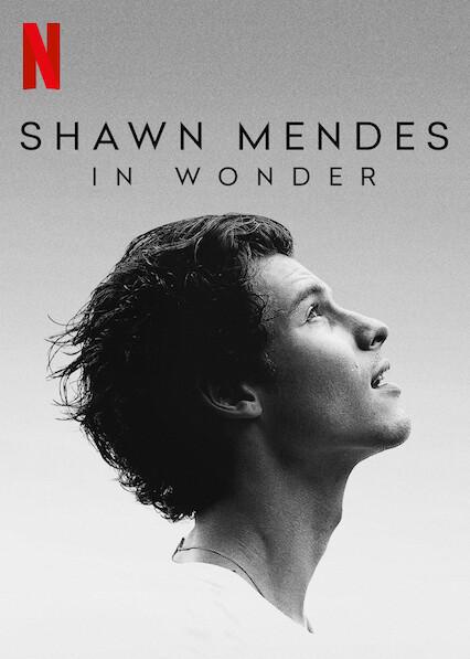 In Wonder Shawn Mendes cartaz