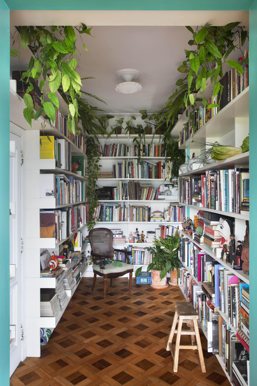 Na biblioteca agora se encontram syngoniuns e filodendros no alto e lírios-da-paz no piso