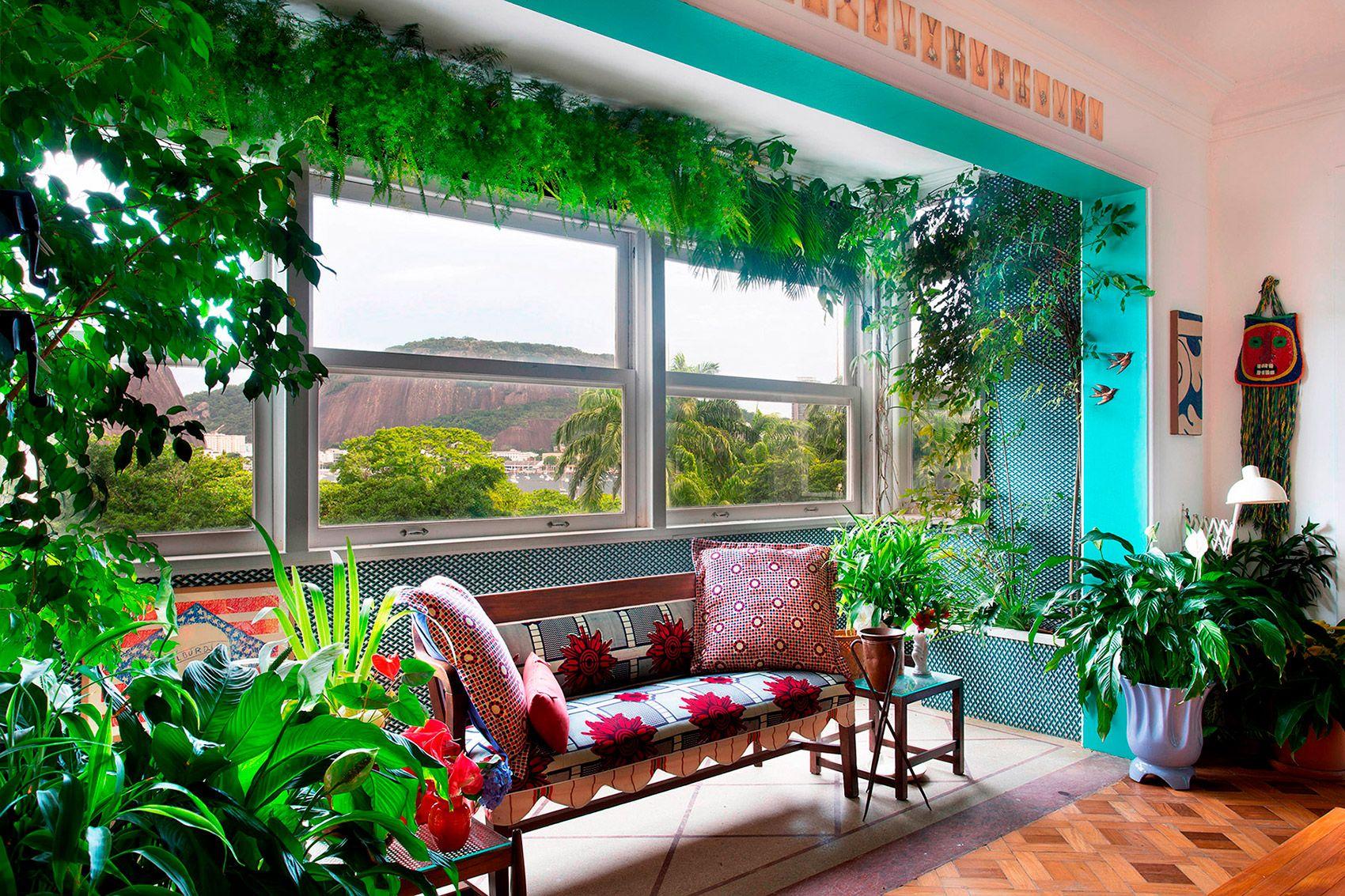 Asparagus-Syngonium-Ficus-Leea e lírio-da-paz na varanda da sala