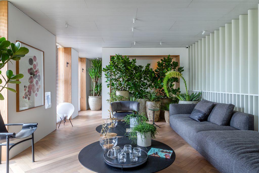 Sala de estar com plantas e sofá cinza