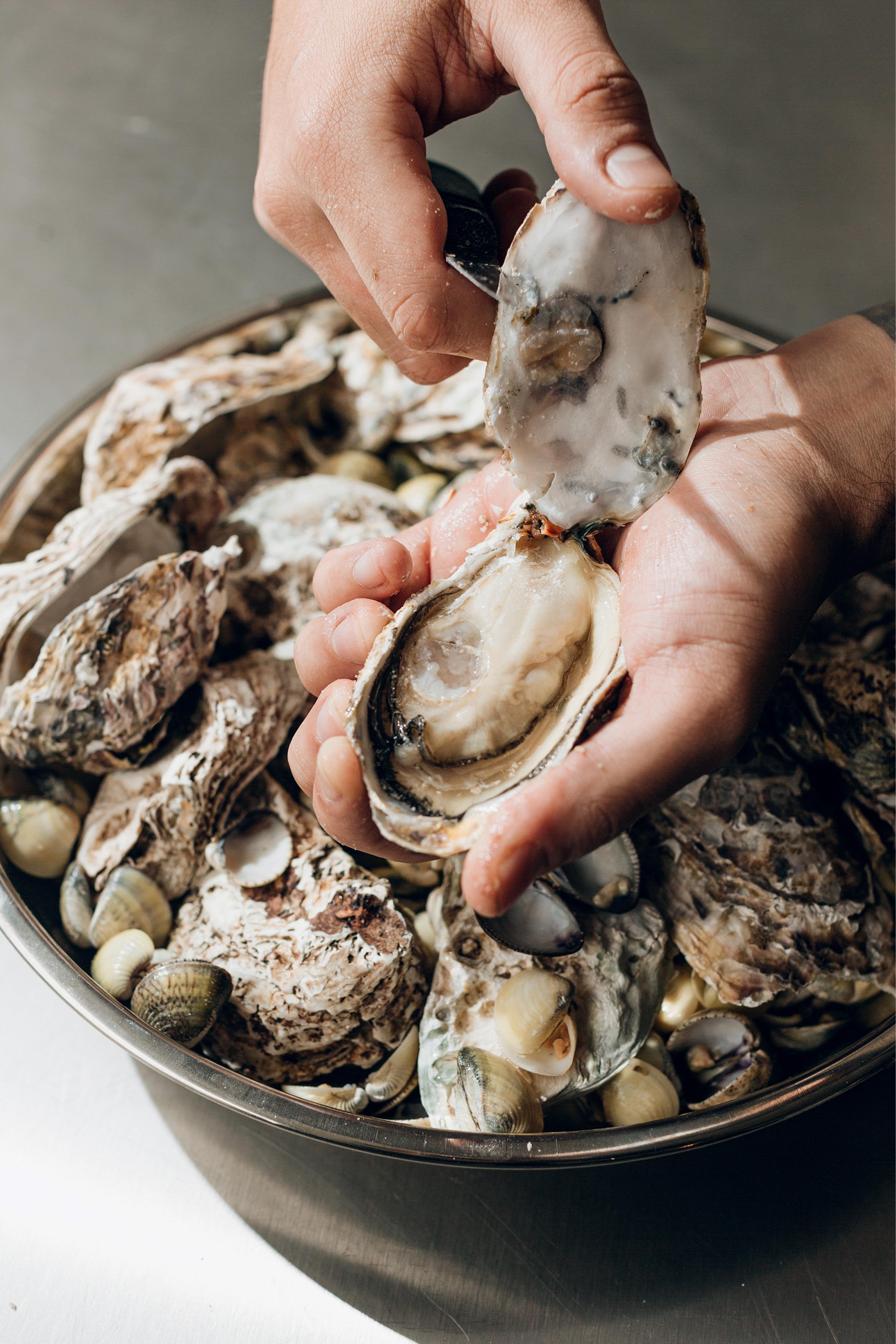 Ostras e frutos do mar - Restaurante Naia