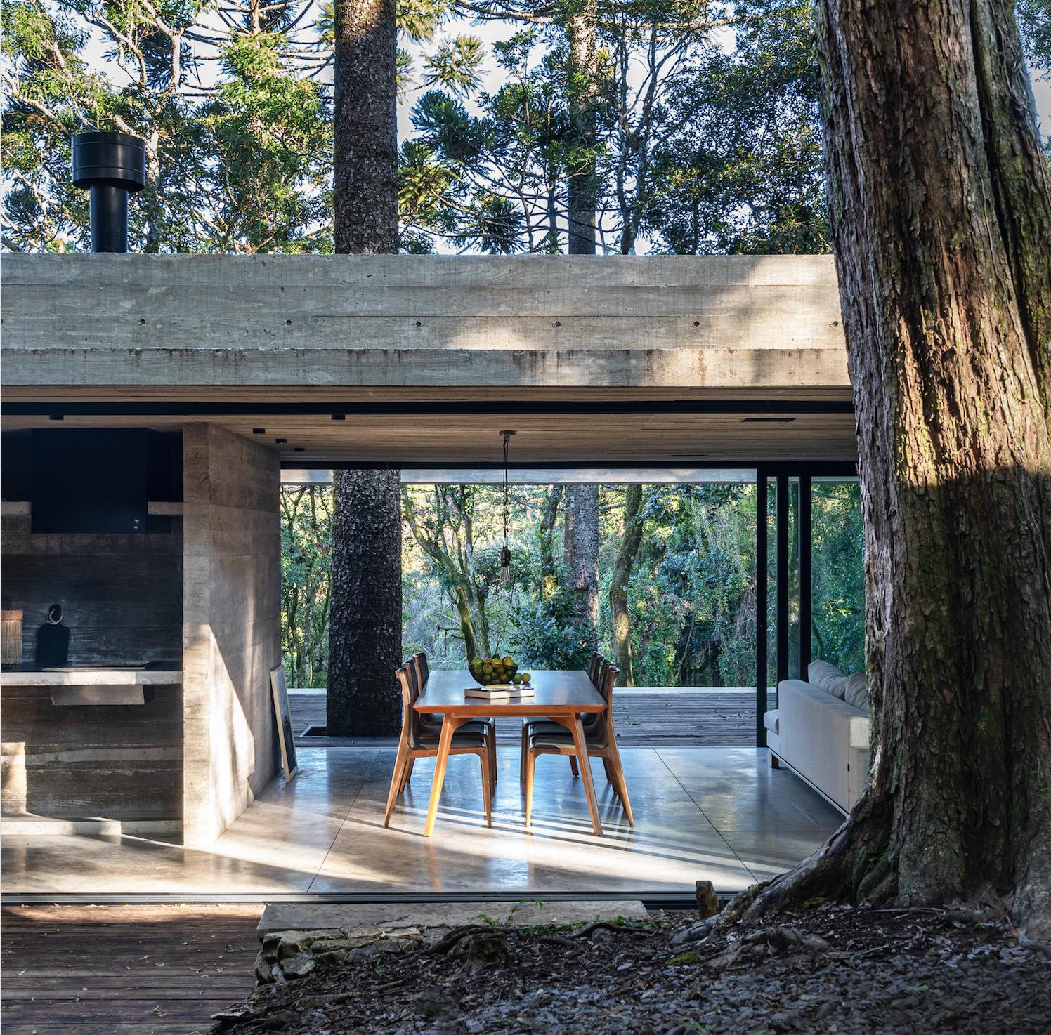 A Casa Fortunata se mimetiza na natureza ao redor de uma Araucária