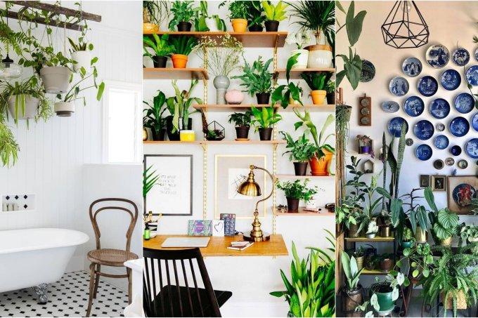 plantas-decoracao-ideias-abre